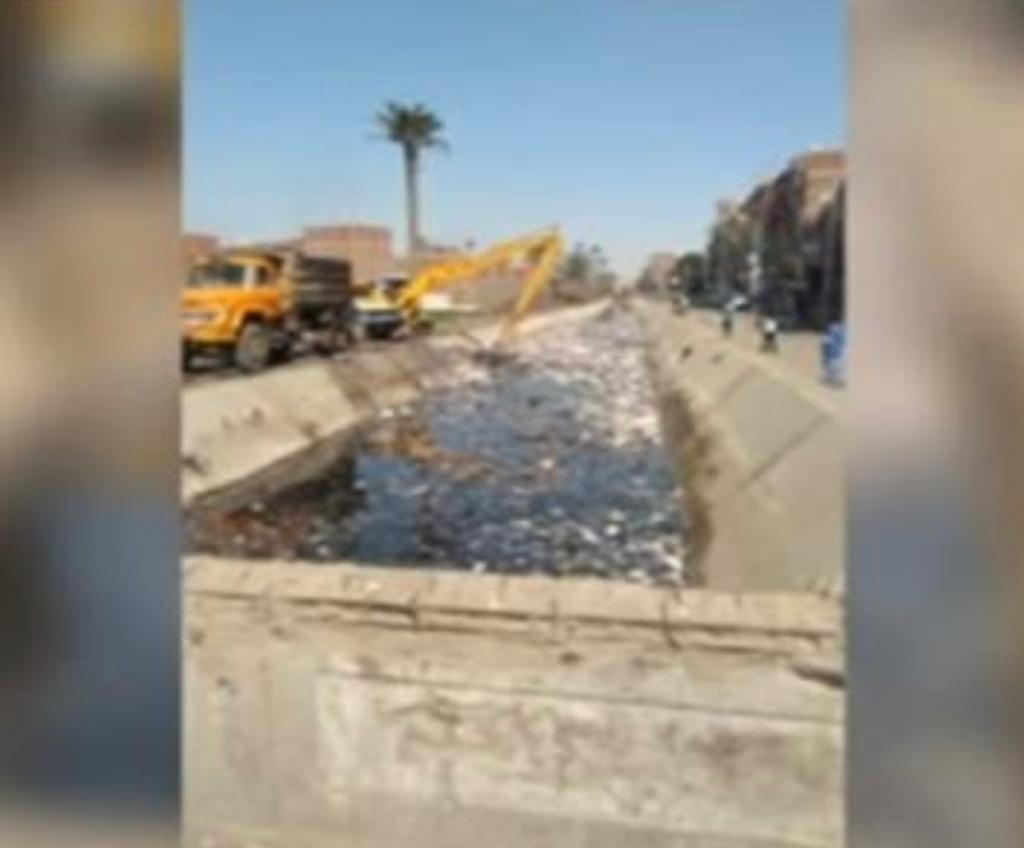 عماد فرغلي يكتب: مواطنون ضد النظافة