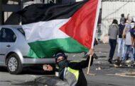عماد فرغلي يكتب: جرائم ضد الإنسانية